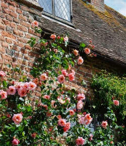 Sissinghurst Castle 7